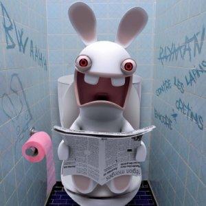 Lapin_cretin_toilettes