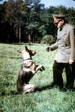 Hitler_w_Blondi_500