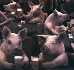 Mage-Design-Pigs-715853