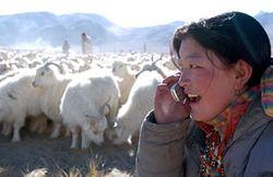 Life-in-Ngari-Tibet