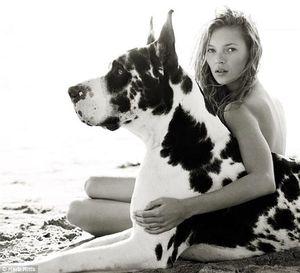 Kate dog