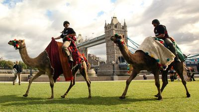 Camel+Racing+Comes+Capital+First+Time+w9dSQ5VhV45l
