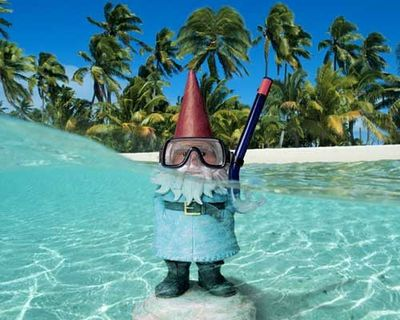 Swimming_gnome