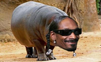Snoop-opotamus