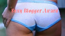 Sexybloggeraward1