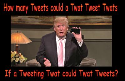 Tweeting-twat
