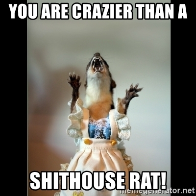 You-are-crazier-than-a-shithouse-rat