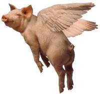 Pigblog