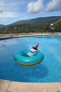 Pool_gnome